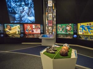 FIFA World Football Museum - Worldcup Gallery